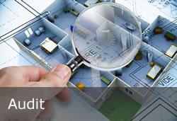 dpfc - Le management QSE - Audit