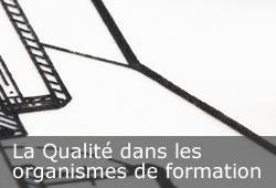 dpfc - Le conseil - La Qualité dans les organismes de formation